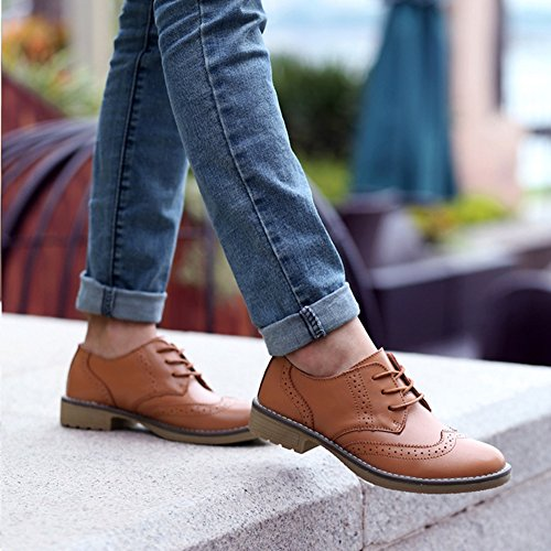 T-july Womens Wingtip Oxfords Shoes - Scarpe Tacco Perfette Retrò Vintage Con Tacco Basso Perforate Marrone