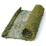 Super Moss 22431 1.5' x 24' Instant Green® All Purpose Moss/Mat Runner