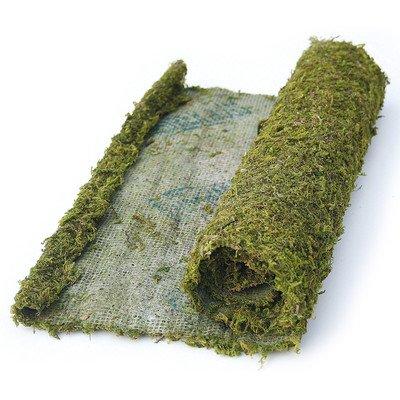 Super Moss 22431 1.5' x 24' Instant Green® All Purpose Moss/Mat Runner
