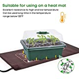 10 Set Seedling Trays Seed Starter Kit, MIXC 60