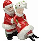 Appletree Design I've Got Your Back Santa and Mrs. Claus Salt and Pepper Set, 4-Inch