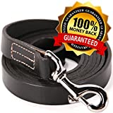 Leather-Training-Leash