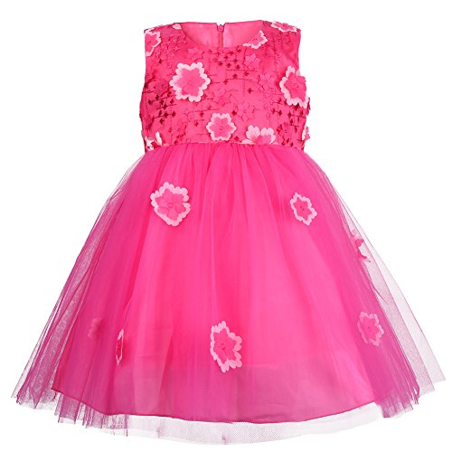 Sun Princess Costume (OKIDSO Princess Dress Party Costumes Flower Girl Dress Tulle Sundress with Embroidery 3D Flowers Sleeveless Design (55.1''/140cm(7-8years), Rosy))