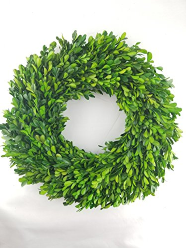 (Preserved Boxwood Wreath - 17