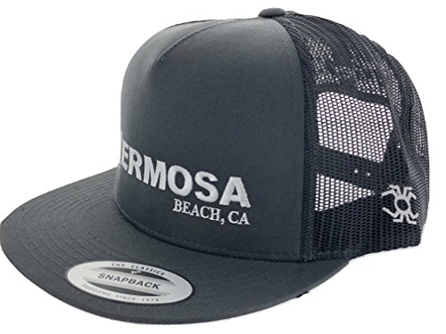 Hurley MHA0004610 Men's Hermosa Beach The Classics Snapback Yupoong hat (Charcoal) (Hat Embroidered Hurley)