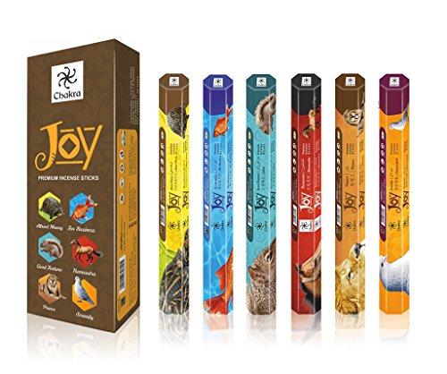 Joy Premium Natural Incense Sticks - 20 Sticks Per Box - Use It At Home or Workplace – Alluring Aroma Sticks - Pack Of 6 Fragrance Sticks Create Peaceful Aura