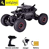 Zest 4 Toyz 1:18 Metal Alloy Body Remote Control Rock Climbing High Speed Monster Racing Car-Assorted Color