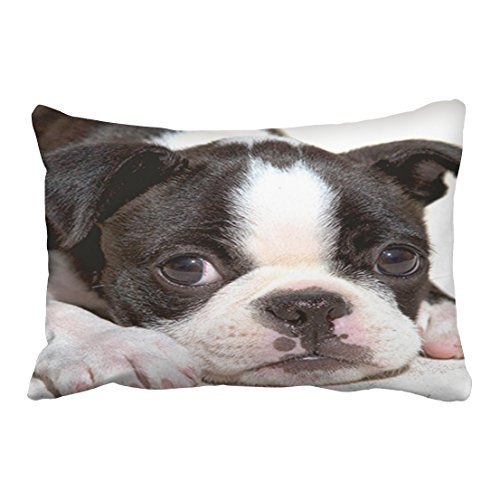 Emvency Throw Pillow Covers Boston Terrier Black And White Puppy Decor Pillowcases 20 x 30 Inch Queen Size Rectangle Pillow Cover Cushion Home Decorative Pillowcase Hidden - Vogue Font Free
