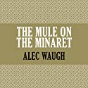 The Mule on the Minaret Audiobook by Alec Waugh Narrated by James Langton