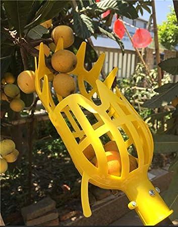 Les Pommes ou Tout Type de Fruits 26CM Blanc DIIYer-Bu Panier de ramasse-Fruits en Plastique pour ramasser Les Oranges