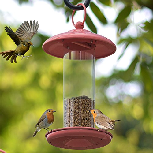 Dbtxwd Bird Feeders, Gazebo Wild Bird Feeder Waterproof- Outdoor Hanging Perfect For Garden Decoration And Bird Watching For Bird Lover And Kids
