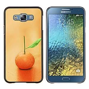 Queen Pattern - FOR Samsung Galaxy E7 E7000 - Nature Beautiful Forrest Green 80 - Cubierta del caso de impacto con el patr???¡¯???€????€????&su