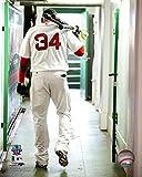 David Ortiz Boston Red Sox 2016 MLB Action Photo