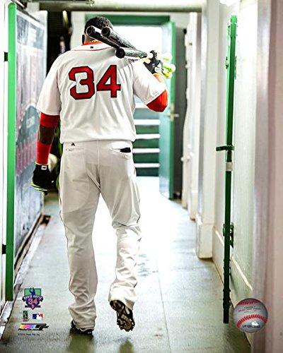 David Ortiz Boston Red Sox 2016 MLB Action Photo (8