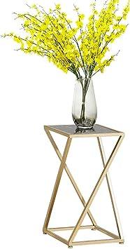 IAN Table d\'appoint Simple Moderne et légère de Petite Table ...