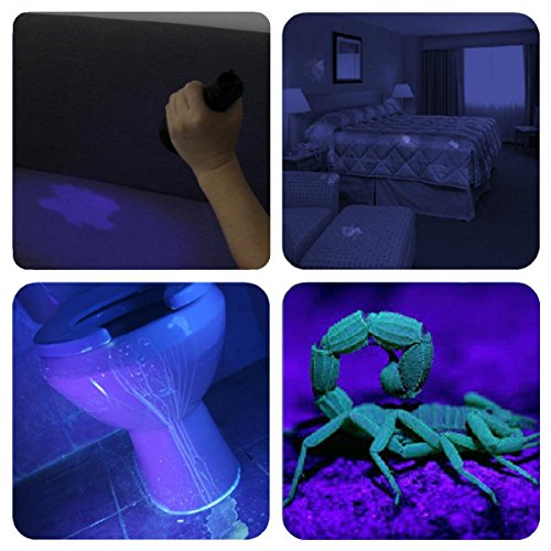 Large Product Image of UV Flashlight Black light UV Lights , Vansky 51 LED Ultraviolet Blacklight Pet Urine Detector For Dog/Cat Urine,Dry Stains,Bed Bug, Matching with Pet Odor Eliminator