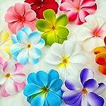 pleasantlyday-10-Pcs-7-cmFlower-Artificial-Silk-Cloth-Frangipani-FlowersHome-Garden-DecorationPale-Pinkish-Grey