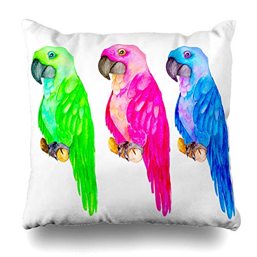 Ahawoso Throw Pillow Cover Square 16x16 Inches Watercolor Beak Colored Parrot Green Bird Bright Color Cute Feather Cushion Case Home Decor Pillowcase (Coloured Tropical Bird With A Large Beak)