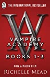 Front cover for the book Vampire Academy by Richelle Mead