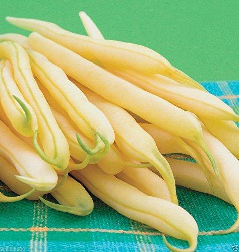 (200 Organic Bean,Kentucky Wonder Wax Pole Bean Seeds, Heirloom !)