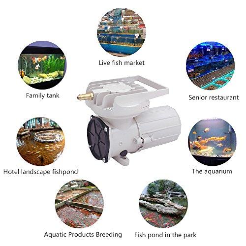 HEALiNK DC 12V 150LPM/Min 2378GPH 105W Aquarium Air Pumps Aquaculture Fish Poods Pressure Compressor Aerator
