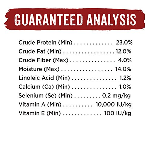 Real Dog Food Comparisons