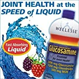 Wellesse Joint Movement Glucosamine With Chondroitin and Msm 33.8 fl oz (1000 ml), Health Care Stuffs