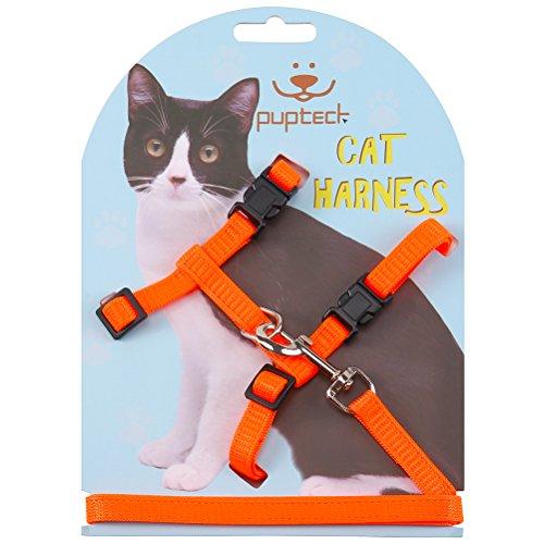 - PUPTECK Adjustable Cat Harness Nylon Strap Collar with Leash Black Fluorescent Orange