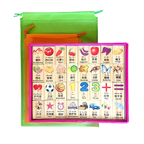 New Chinese English Language Learning Wooden Domino Blocks, for Mandarin Chinese Teaching and Learning, with Pinyin Pronounce Guide, Gift for Kids (96pcs)