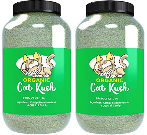 Cat Kush Organic Catnip, Safe Premium Blend Perfect for Cats, Instilled with Maximized Potency Your Kitty is Guaranteed to Go Crazy for! (8 Cups)