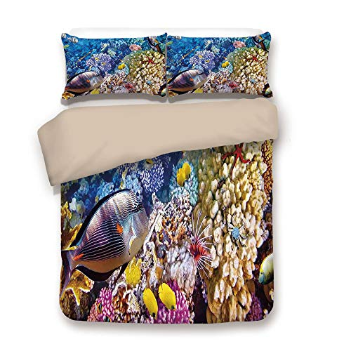 - Duvet Cover Set,Back of Khaki,Fish,Egyptian Red Sea Bottom View with Marine Creatures Top of Tribal Ocean Scuba Image,Multicolor,Decorative 3 Pcs Bedding Set by 2 Pillow Shams,King
