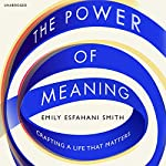 The Power of Meaning: Crafting a life that matters | Emily Esfahani Smith