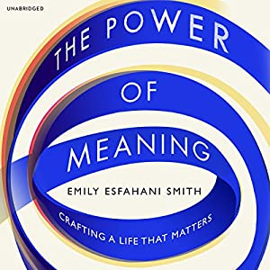 The Power of Meaning Hörbuch