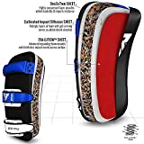 RDX Muay Thai Pad for Training | Curved
