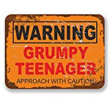 2 x Grumpy Teenager Warning Sign Vinyl Stickers