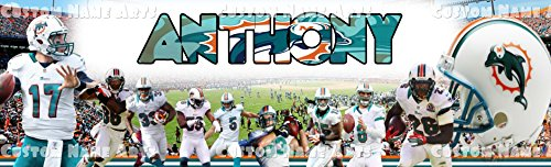 Personalized Miami Dolphins NFL Sports Banner Birthday Poster Custom Name Painting