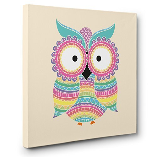 Colorful Owl CANVAS Wall Art Home Décor by Paper Blast