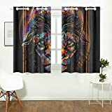 WIEDLKL Kids Bedroom Curtain Color Lion Modern Art Element Design Kids Bedroom Curtains for Girls Curtains Door Window for Cafe Bath Laundry Living Room 26x39inch 2pieces