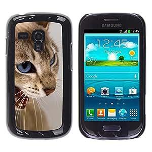 Caucho caso de Shell duro de la cubierta de accesorios de protección BY RAYDREAMMM - Samsung Galaxy S3 MINI NOT REGULAR! I8190 I8190N - Cat Blue Eyes Brown White Angry Teeth