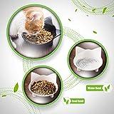 Cat Bowls Cat Food Bowls Non Slip Cat Double Dish