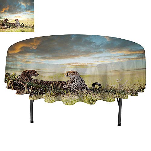 SATVSHOP Round Polyester Tablecloth-Indoor Outdoor Camping Picnic Circle Table Cloth.Safari Two Cheetahs Africa Nature Grass Dangerous Animals Hunters ainy Weather Green Blue Ivory.