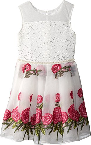 Embroidered Organza Dress (Nanette Lepore Kids Girl's Embroidered Organza Dress (Little Kids/Big Kids) White Medium)