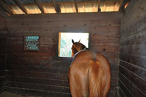 All Horses Deserve to be Loved by a Girl Decorative Wood Sign (brown with Turquoise lettering)