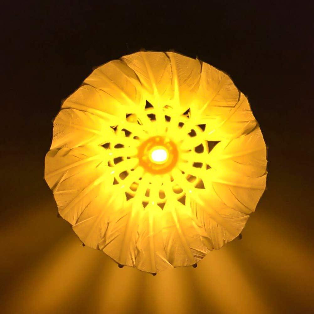 Volano Scuro Notte Oca Piume Brillano Birdies Illuminazione per ...