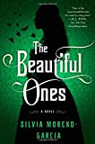 The Beautiful Ones: A Novel