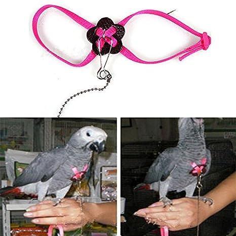 Osun Arnés y correa ajustables para pájaros para loro, cacatúa ...