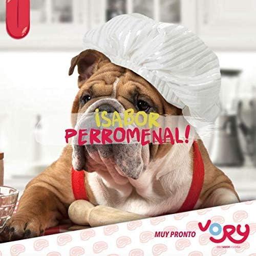 Vory delicioso aderezo para las croquetas de tu perro, complemento alimenticio, utilízalo también como premio, le ayudara a mejorar su digestión, las vitaminas y probioticos que necesita (Mixto, 1 Res + 1 Pollo + 1 Salmón) 8