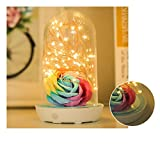 Table Lamp, Bedside Lamps Glass Dome Lamp Bell Jar Display Dome Blue PVC Base with with LED Warm Fairy Starry String Lights Ideal for Decoration Christmas Charging