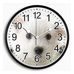 Monica M Joheson Plastic Frame Glass Cover Large Round Wall Clock Battery Operated Arabic Number Personalized Quartz Silent Non Ticking School/Office/Home Decorative Easy to Read 10 Inch