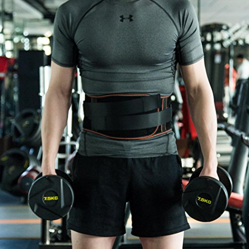 King of Kings Lower Back Brace Pain Relief with Pulley System - Lumbar Support Belt for Women and Men - Adjustable Waist Straps for Sciatica, Spinal Stenosis, Scoliosis or Herniated Disc - Medium